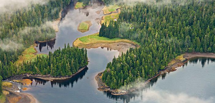 Tours in Alaska
