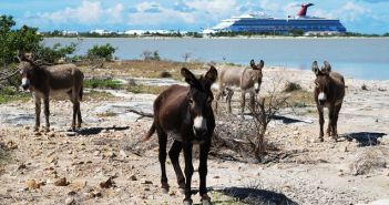 The Grand Turk Island, Bahamas