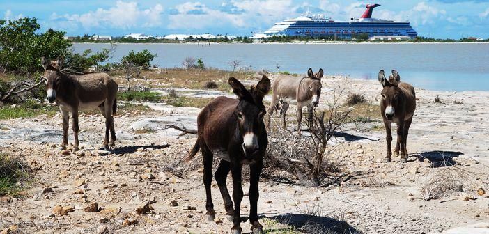 Grand Turk Island The True Historic Melting Pot Of The