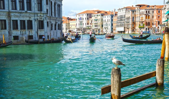 Venetian gondolas on the blue water of the Grand Canal
