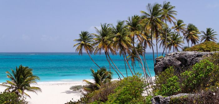 Barbados trips - beautiful beach scenery