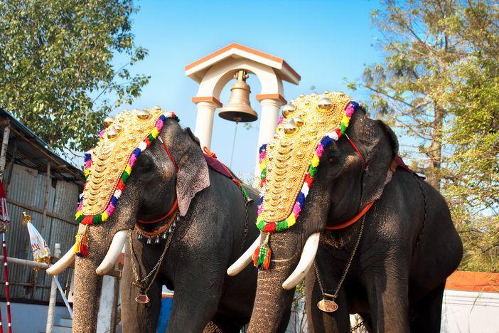 annual festival in Siva Temple