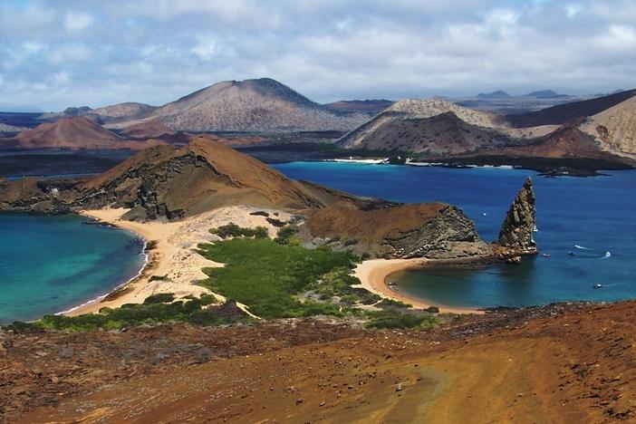 Galapagos nature