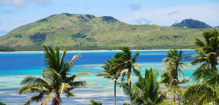 Palm trees on the beach near Suva, Fiji