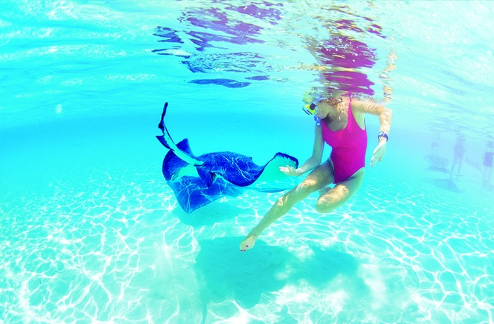 Swimming with a stingray