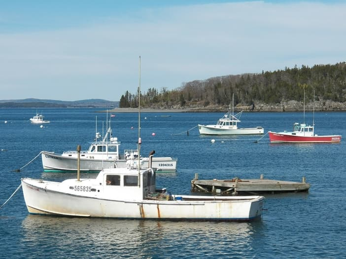 Lobster boats at Bar Harbor